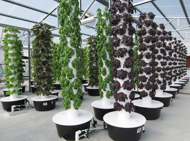 The Green2ouse Lunch And Tour Shows Off Sister Owned Tower Garden Vertical Growing Systems