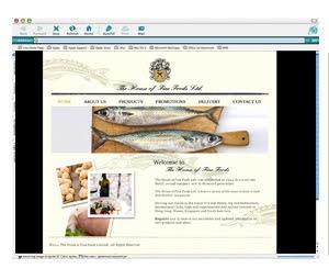 http://oliviaaivilo.blogspot.com/
