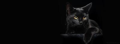 Capas para Facebook  gato preto