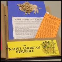 Native American Struggle