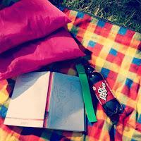 A Reading Picnic