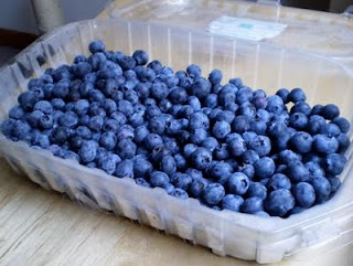 Buncha+Blueberries Why and How to Freeze Blueberries