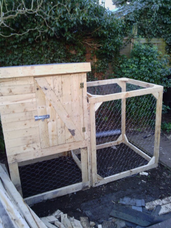The Shed And Beyond Chicken Coop From A Pile Of Pallets
