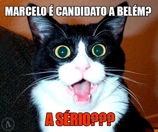 Imagem de Gato espantado - Marcelo é candidato a Belém? A sério???