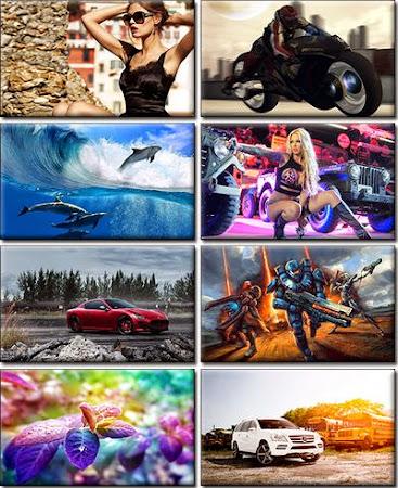 Computer Desktop Wallpapers Collection 701