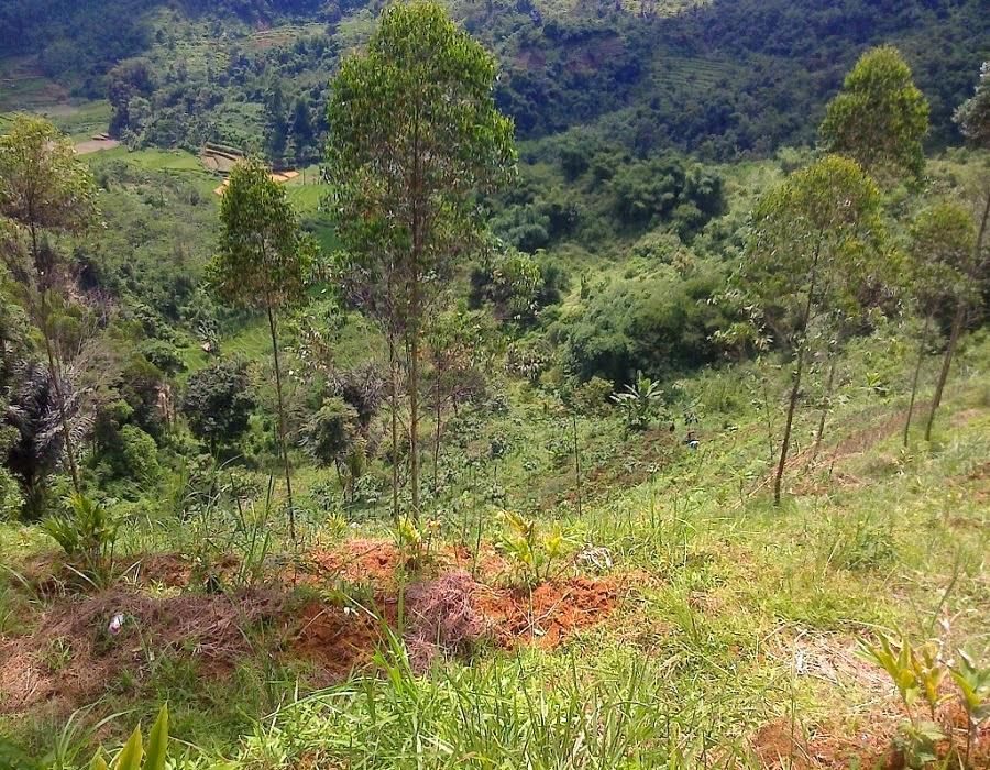 tanah dijual di banjaran bandung