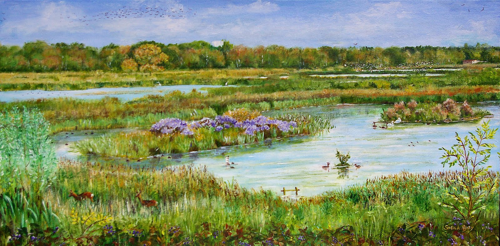 Autumn Pallett Huxter Well Marsh