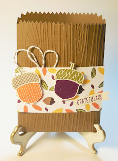 Gift Bag made with Stampin'IP!'s Mini Treat Bag Thinlits