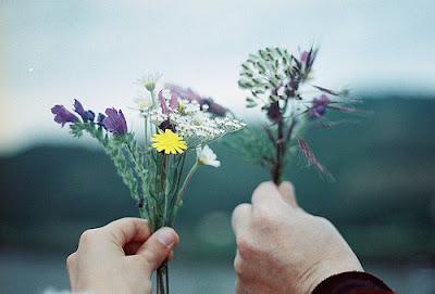 imagem flores invernais