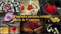 Wymianka Różana