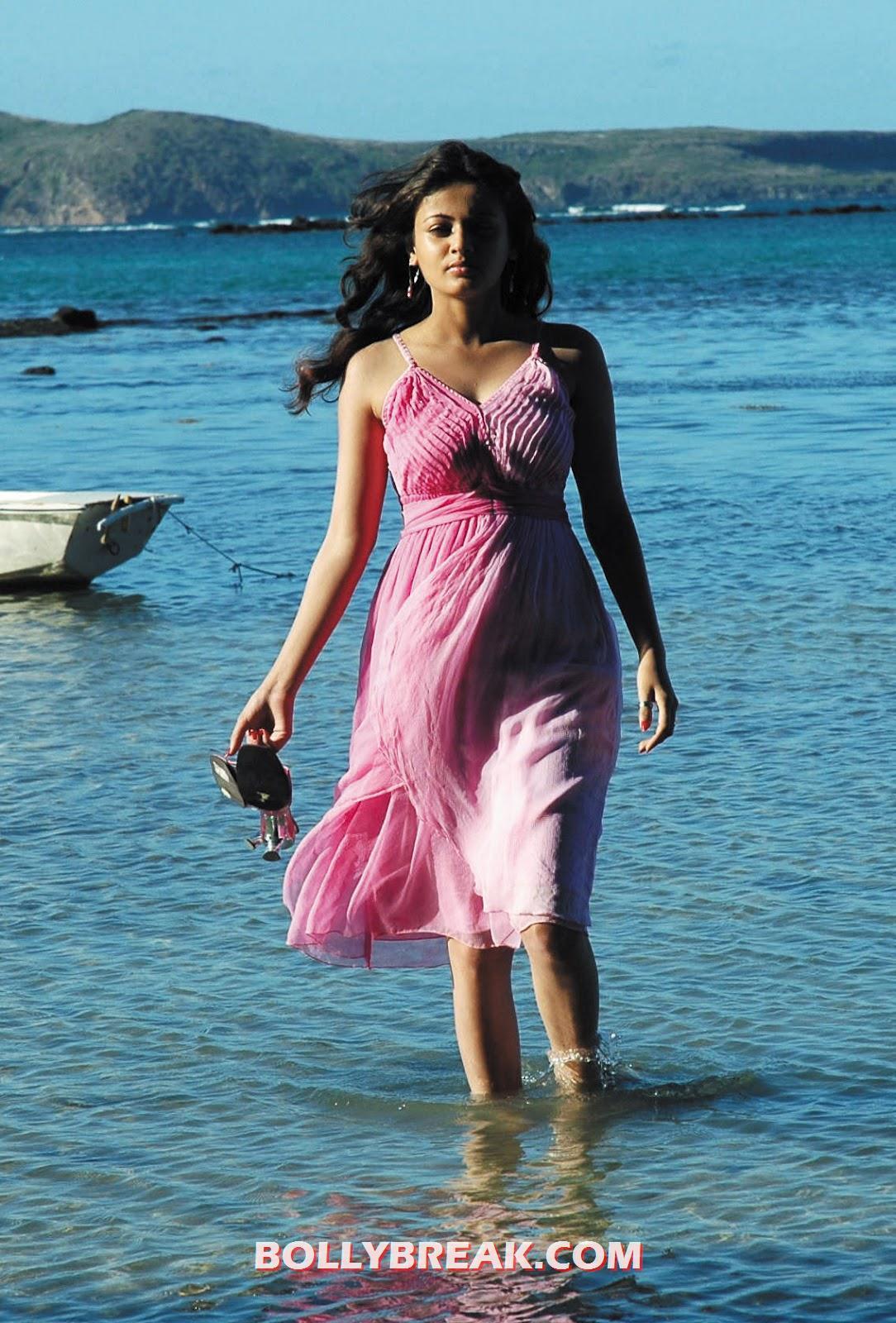 , Actress Sada Hot Photos