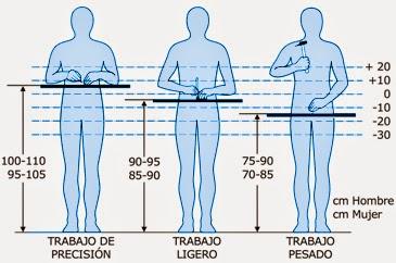 Fisioterapia hombre de virtuvio y la historia de la for Medidas ergonomicas del cuerpo humano