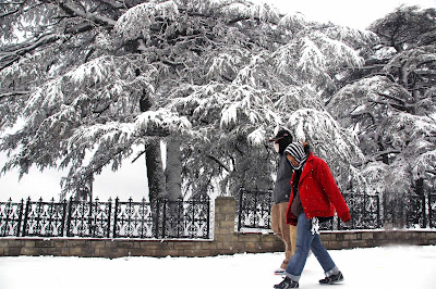 Shimla,mNorth India Tours