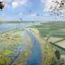 13,5 miljoen voor herstel getijdenlandschap Haringvliet