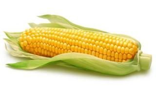 manfaat buah jagung