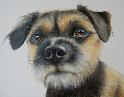 Pet Portrait Border Terrier oil on canvas