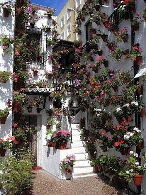 A donde nos vamos patios andaluces for Patios andaluces decoracion