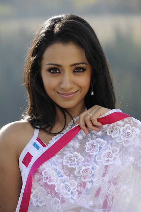 trisha in transparent saree cute stills