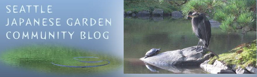 Seattle Japanese Garden Community Blog