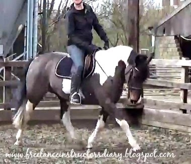 Riding Instructor's Diary