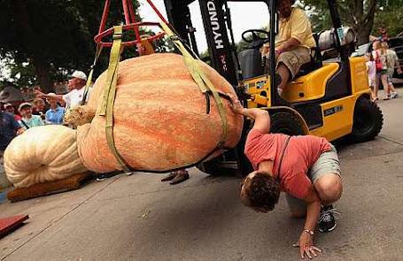1,024-pound pumpkin