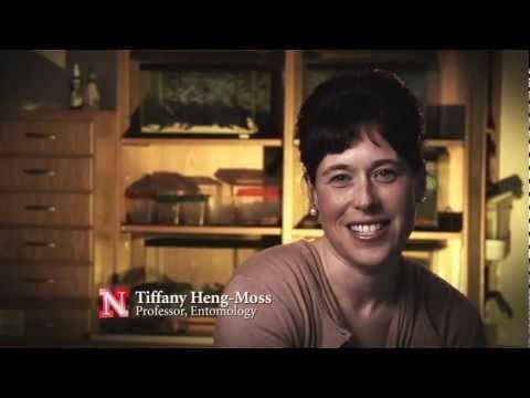 Tiffany Heng Moss