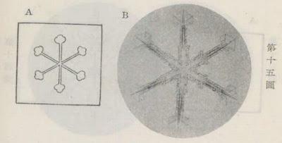 『雪華図説』の研究 模写図と顕微鏡写真と比較 第十五図