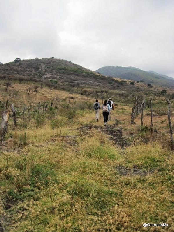 Senderismo en la Sierra del Tecuán
