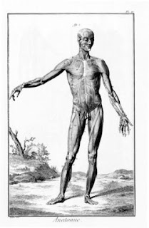 Arti Gerakan Dalam Anatomi