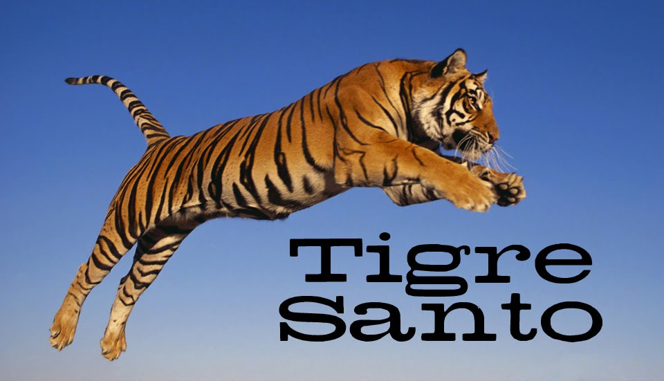 Tigre Santo