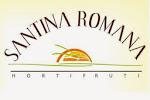 Hortifruti Santina Romana