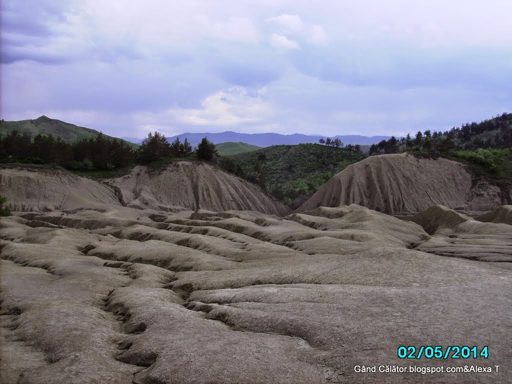 Photo serie: Geological & botanical views. Vulcanii Noroioși de la Pâclele Mari.  The Big Mud Volcanoes from Pâclele Mari.  Arhiva foto privată/ Private photos archive. Click to see enlarged views.