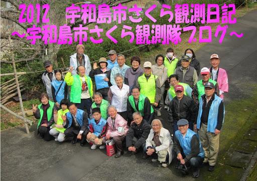 2012 宇和島市さくら観測日記