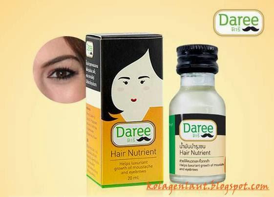 Minyak DAREE Untuk Melabatkan Rambut, Misai, Janggut, Jambang atau Kening