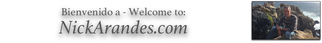 Nick Arandes Websites