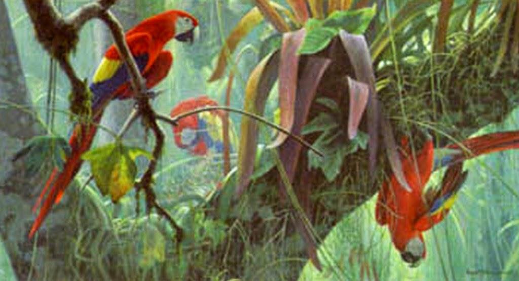 paisajes-realistas-con-aves