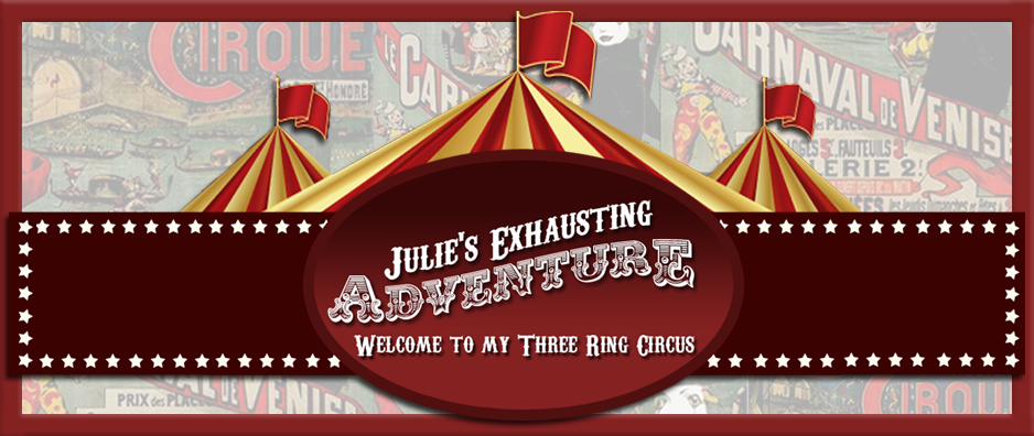 Julie's Exhausting Adventure