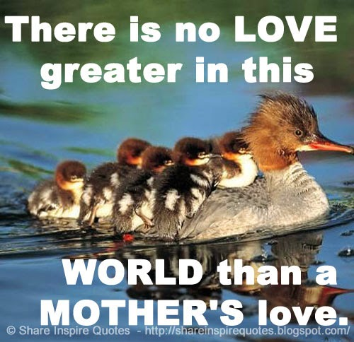 Mother Love Quotes Interesting There Is No Love Greater In This World Than A Mother's Love