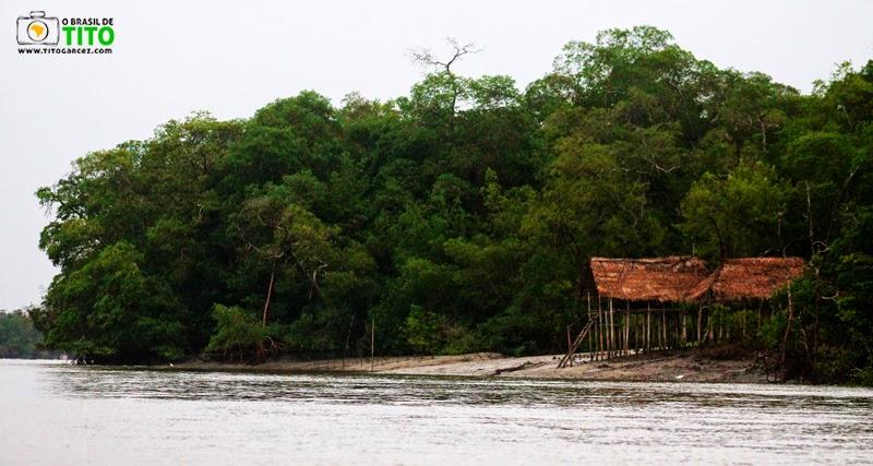 Manguezal e barraca de pescadores, na ilha de Maiandeua (Algodoal), no Pará