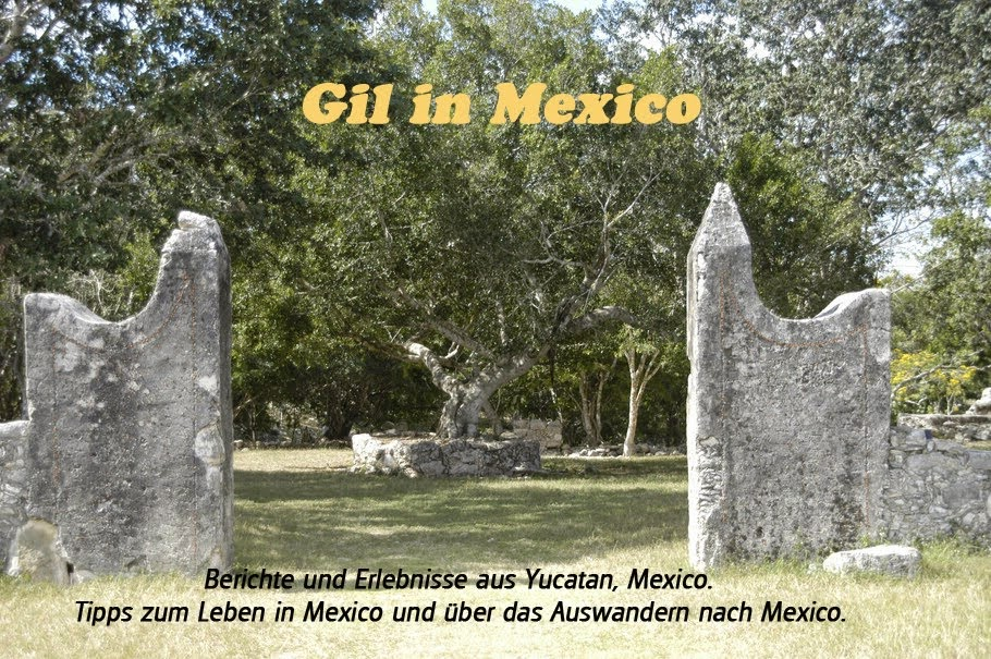 Gil in Mexico