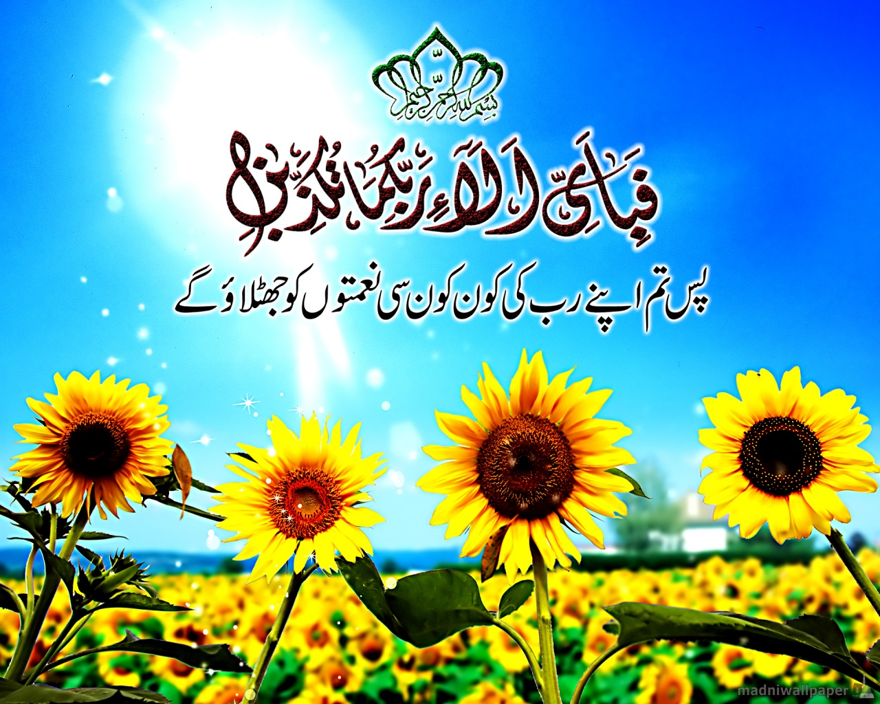 Surah Rahman Beautiful Verse Ayat Sun Flower Islamic ...