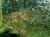 Runes de l'ermita de Santa Cecília