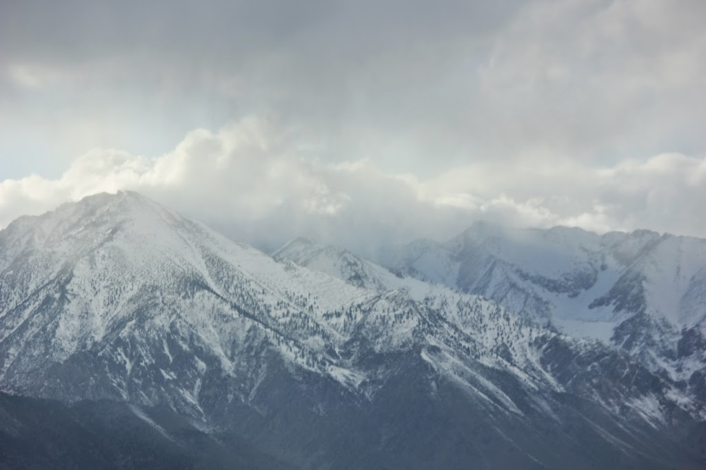 snowstorm in the Eastern Sierras
