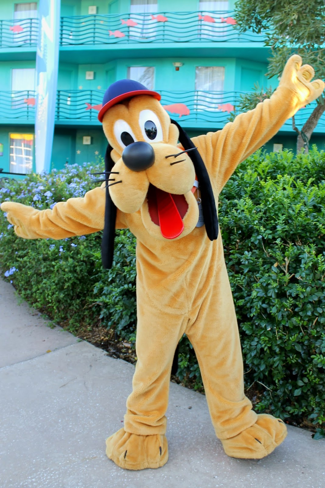Pluto Halloween All Star Sports Disney character Hunt