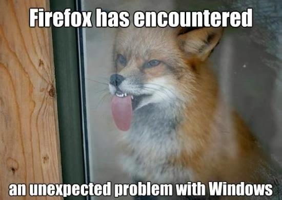 funny-animal-joke.jpg