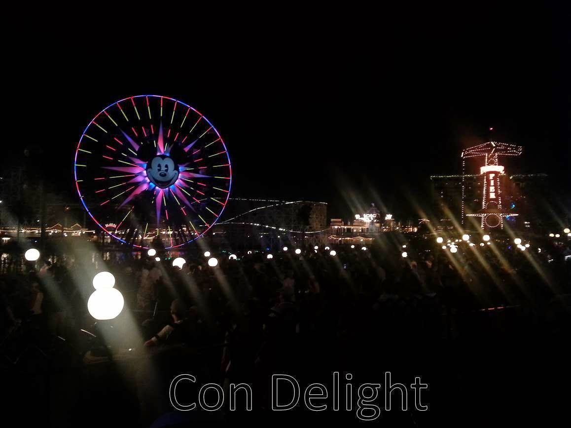 disneyland ferris wheel night