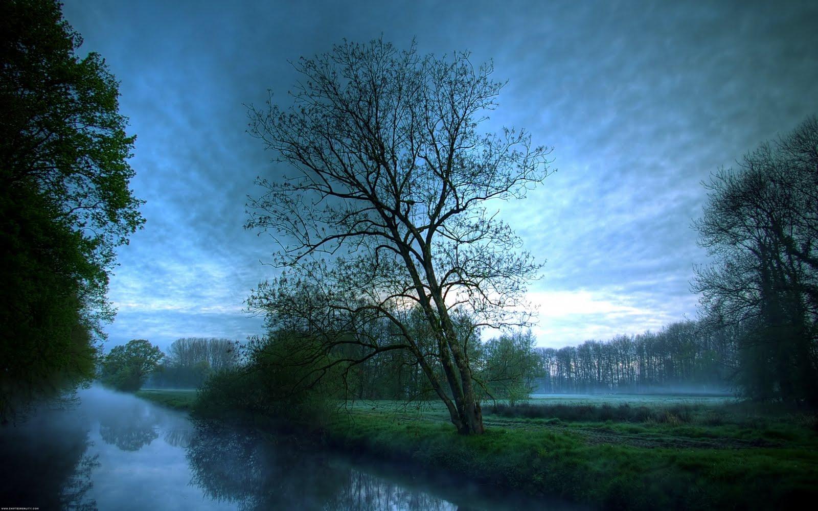 http://3.bp.blogspot.com/-b1zONuWeuSU/TjP_d-bt5_I/AAAAAAAAAE0/pWowXwsAHPM/s1600/Nature+wallpapers++6.jpg