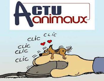 ACTUANIMAUX - SOLIDARIDAD CON LOS ANIMALES