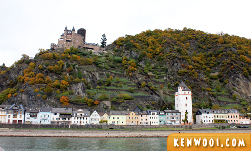 rhine valley cruise