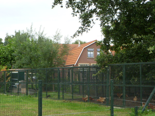 birgit s landleben holland winterswijk. Black Bedroom Furniture Sets. Home Design Ideas